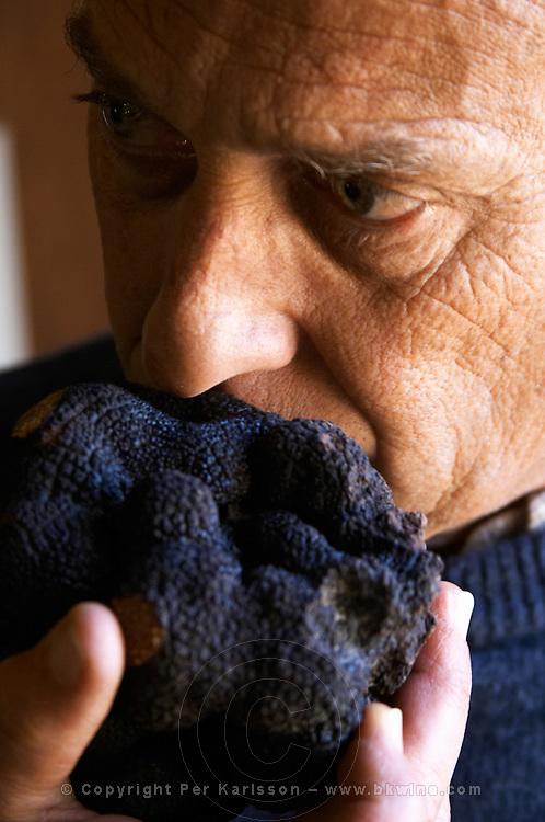 Hugues Martin, the owner of the truffles farm holding a gigantic fresh black Perigord truffle in his hand, weighing around 700 grams Truffiere de la Bergerie (Truffière) truffles farm Ste Foy de Longas Dordogne France
