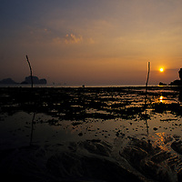 Reflections of sunset in water at low tide, Tonsai Beach, Thailand