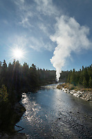 Steam plume emitting from Riverside Geyser Firehole River Yellowstone National Park