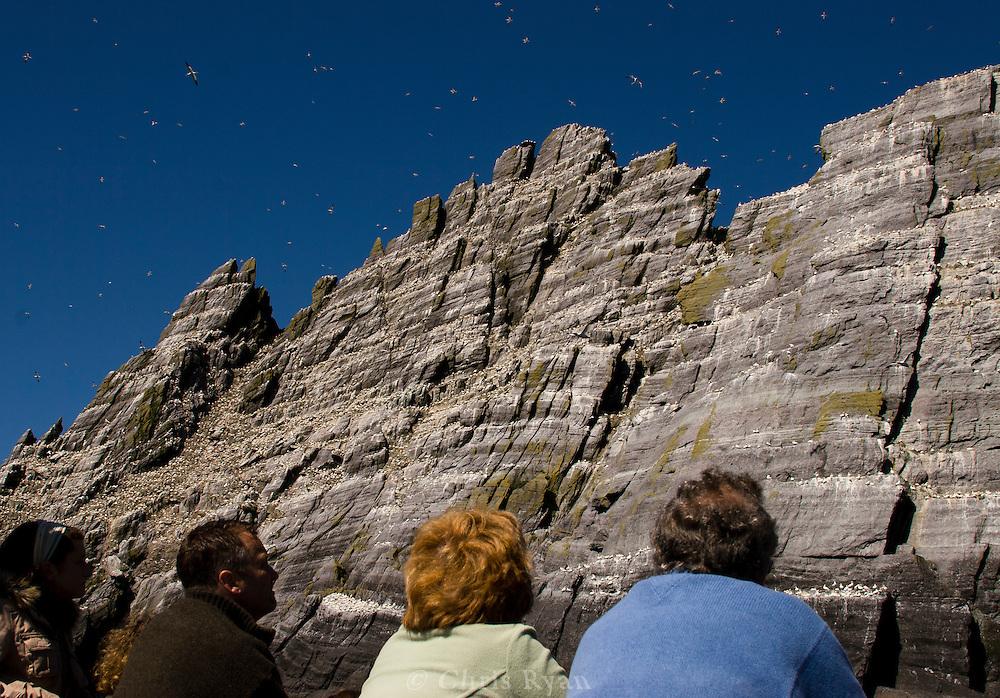 Tourists watching gannet birds on Little Skellig, County Kerry, Ireland