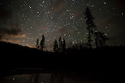 Cloudy starscape in the night sky over and Iaho forest