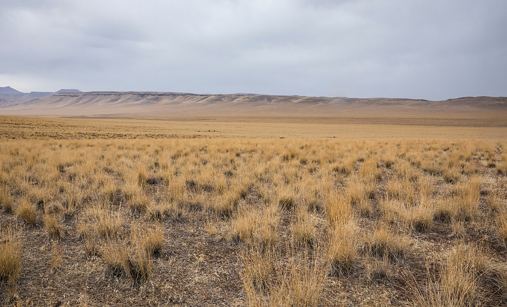 Southeast Oregon landscape on a rainy day in October. USA.
