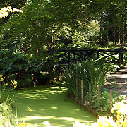 NLD/Wassenaar/20050717 - Fotosessie prins Willem - Alexander, prinses Maxima, Amalia en Alexia, landgoed de Horsten, tuin, vijver, brug