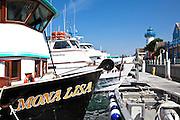 The Mona Lisa Docked At Marina Del Rey Harbor