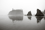 rock formations at Ruby Beach - Olympic National Park, WA