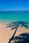 Beach<br />