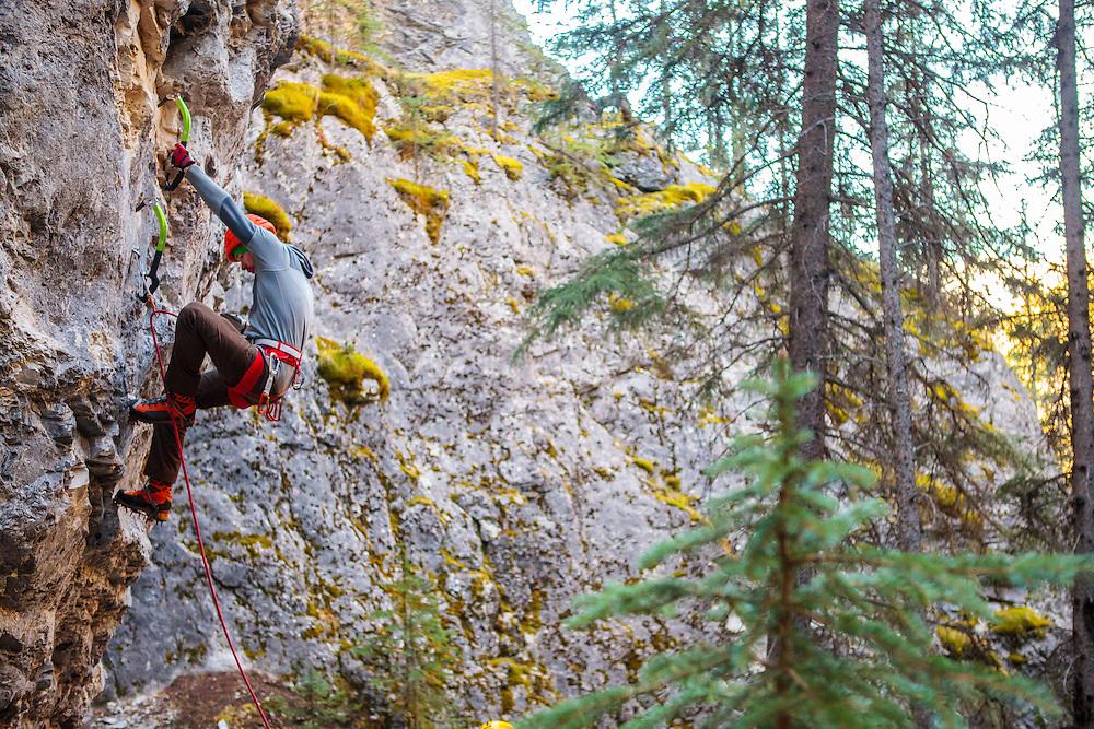 Raf Mixed Climbing Playground