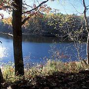 Minnesota, Fall Scenics,Leaves turning colors in autumn.