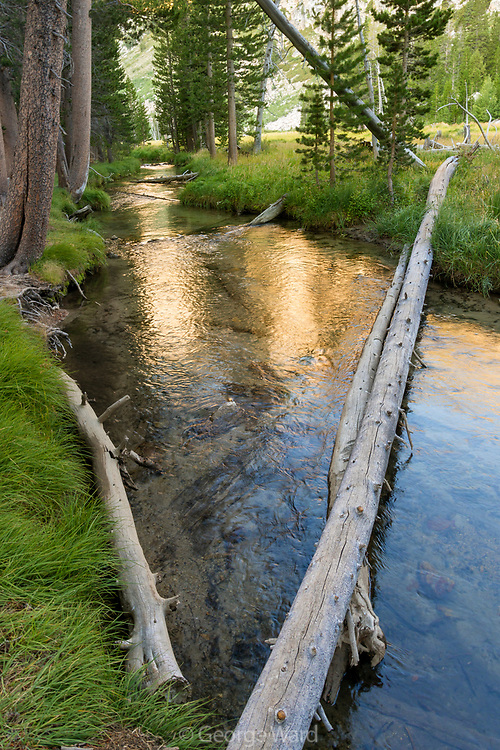 Horse Creek, Hoover Wilderness, Toiyabe National Forest, California