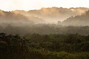Misty Landscape in Manu National Park, Peru, South America