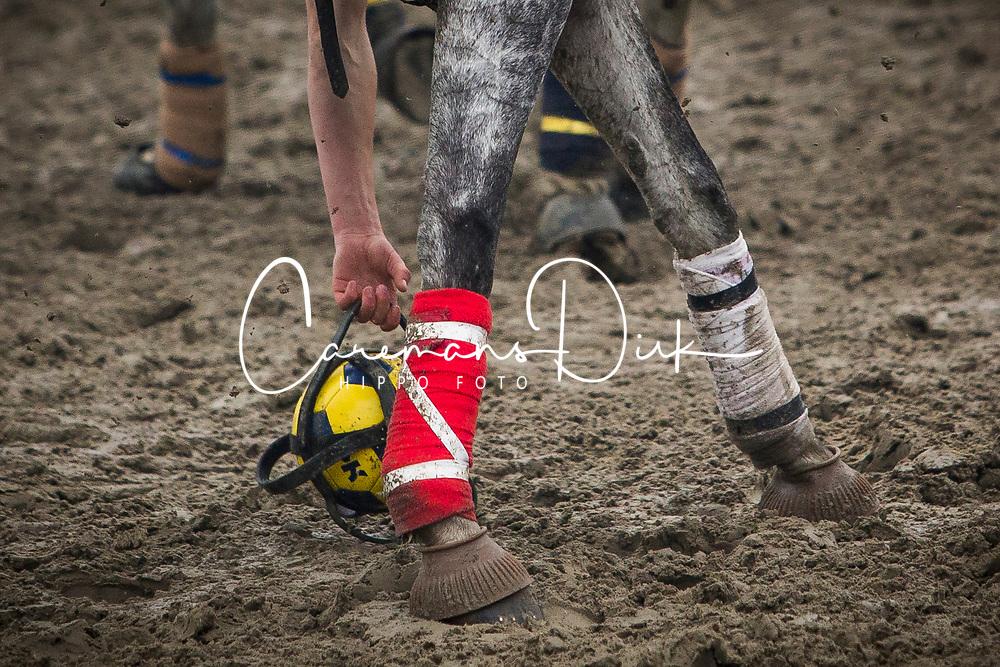 Van Herreweghe Axel, BEL, Princess Querda<br /> BK Horseball 2018<br /> © Sharon Vandeput<br /> 15:49:43