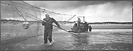 Salmon netters Bob Ritchie lifts out a fish through the pocket of a 'jumper' net at low tide on the sands at Kinnaber, Angus.<br /> Ref. Catching the Tide 33/00/22 (30th May 2000)<br /> <br /> The once-thriving Scottish salmon netting industry fell into decline in the 1970s and 1980s when the numbers of fish caught reduced due to environmental and economic reasons. In 2016, a three-year ban was imposed by the Scottish Government on the advice of scientists to try to boost dwindling stocks which anglers and conservationists blamed on netsmen.