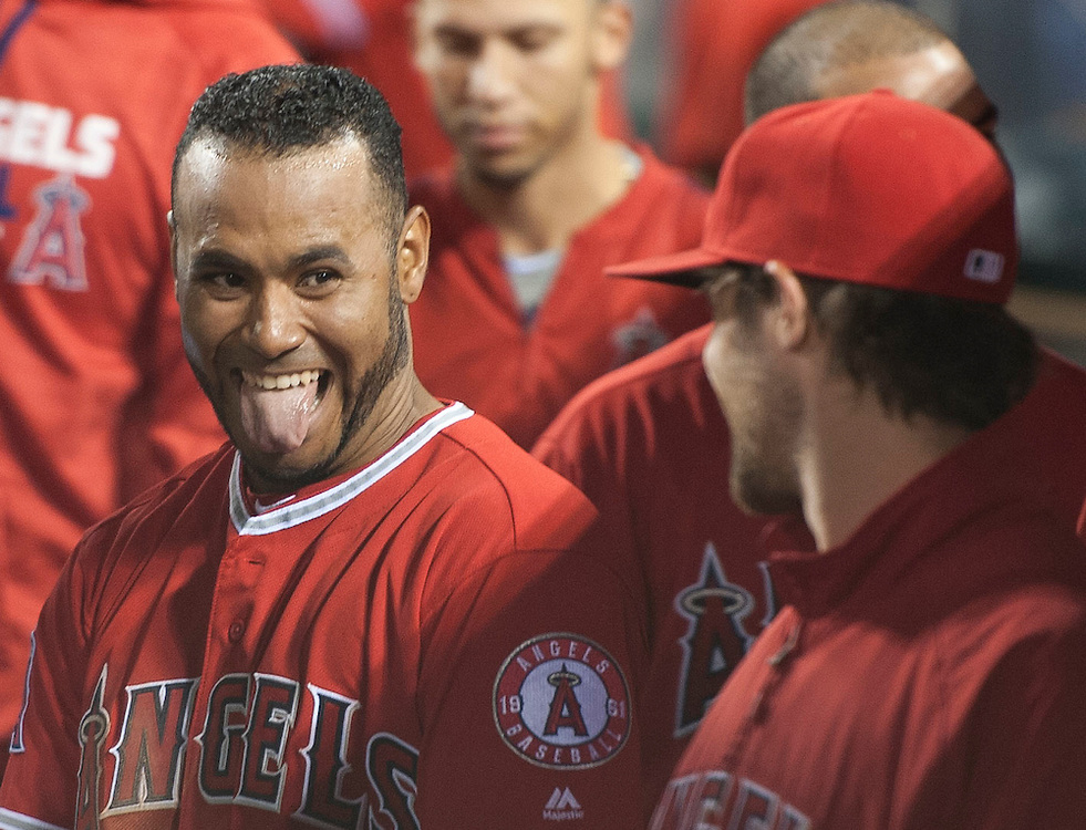 The Angels' Gregorio Petit celebrates with C.J. Wilson in the dugout after scoring in a Kole Calhoun double in the fifth inning against the Minnesota Twins Tuesday night at Angel Stadium.<br /> <br /> ///ADDITIONAL INFO:   <br /> <br /> angels.0615.kjs  ---  Photo by KEVIN SULLIVAN / Orange County Register  -- 6/14/16<br /> <br /> The Los Angeles Angels take on the Minnesota Twins Tuesday at Angel Stadium.
