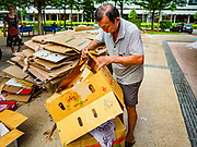 11 DECEMBER 2018 - SINGAPORE:  A man picks up cardboard for recycling in the Geylang neighborhood. The Geylang area of Singapore, between the Central Business District and Changi Airport, was originally coconut plantations and Malay villages. During Singapore's boom the coconut plantations and other farms were pushed out and now the area is a working class community of Malay, Indian and Chinese people. In the 2000s, developers started gentrifying Geylang and new housing estate developments were built.     PHOTO BY JACK KURTZ