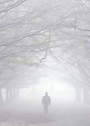 A shadowy figure of a man can be seen walking through the fog in Richmond Park in London on 17th November 2010. © under license to London News Pictures.