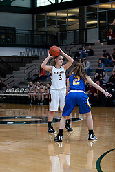 26 January 2013: Tri-Valley lady Vikings v Le Roy Lady Panthers 3 place game, Final Round McLean County Tournament at Shirk Center in Bloomington Illinois