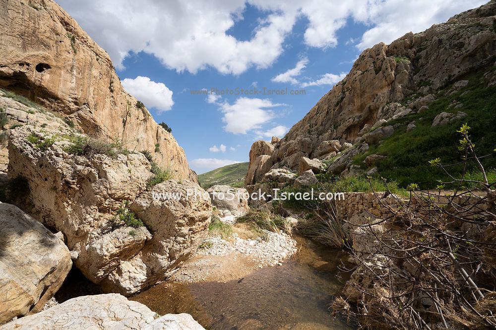 Judean Desert Wadi Qelt, (also Kelt) near St. George Greek Orthodox Monastery, in the eastern West Bank