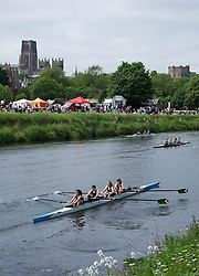 © Licensed to London News Pictures.13/06/15<br /> Durham, England<br /> <br /> Teams race during the 182nd Durham Regatta rowing event held on the River Wear. The origins of the regatta date back  to commemorations marking victory at the Battle of Waterloo in 1815. This is the second oldest event of this type in the country and attracts over 2000 competitors from across the country.<br /> <br /> Photo credit : Ian Forsyth/LNP