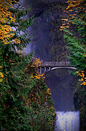 And image of the bridge spanning Multnomah Falls, in the Columbia River Gorge, outside of Portland, Oregon in the Autumn