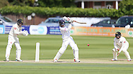 Sean Terry during the LV County Championship Div 1 match between Sussex County Cricket Club and Hampshire County Cricket Club at the BrightonandHoveJobs.com County Ground, Hove, United Kingdom on 9 June 2015.