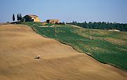 Agricultural landscape in Toscana