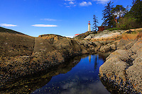 Landscape and Nature Photography at Lighthouse Park in the spring.<br /> <br /> ©2016, Sean Phillips<br /> http://www.RiverwoodPhotography.com