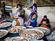 18 JUNE 2015 - PATTANI, PATTANI, THAILAND: Women sell fresh seafood in the market in Pattani. Many Thai Muslims go shopping early in the day to buy food for Iftar, the meal that breaks the day long Ramadan fast.    PHOTO BY JACK KURTZ