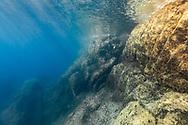 Landscape of Mediterranean Sea, Port-Cros, France.
