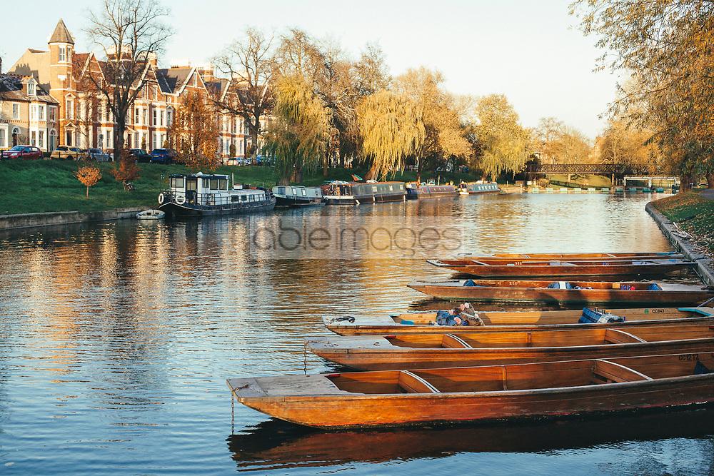 Punt Boats on River Cam, Cambridge, England, United Kingdom