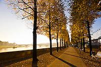 Autumn scene along the Elbe RIver, Dresden, Saxony, Germany