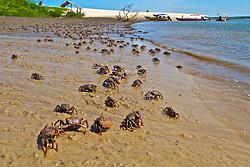 Praia do Caburé, no Maranhã faz parte do Parque Nacional dos Lençóis Maranhenses é um parque nacional brasileiro criado em 2 de junho de 1981 numa área de 155 mil hectares nas margens do Rio Preguiças, no nordeste do estado do Maranhão e distante cerca de 260 km de São Luís, ocupando uma área total de 270 quilômetros quadrados, com dunas de até 40 metros e lagoas de água doce. FOTO: Lucas Uebel/Preview.com