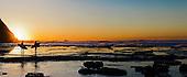Panoramic Stock Photos of Surfing at Sunrise, Australia