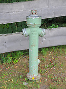 Green Fire hydrant in a forest at Titisee, Neustadt, (Black forest Schwarzwald), Baden-Württemberg, Germany