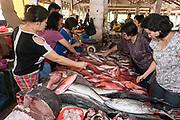 Buying fish at Tomohon extreme market, north Sulawesi, Indonesia.
