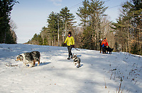 """Trapper"" and ""Bode"" lead the way for Jan Jeffrey, Lisa Keller and Carolyn Larocque with her dog ""Jake"" during their Saturday morning ""walks"" at Ahern State Park.  (Karen Bobotas/for the Laconia Daily Sun)"