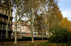Autumn street scene in Allées Forain-François Verdier, Toulouse, France<br /> <br /> (c) Andrew Wilson | Edinburgh Elite media