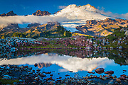 """Mount Baker reflecting in tarn near Park Butte in the Mount Baker Wilderness <br /> ..... <br /> Mount Baker, also known as Koma Kulshan or simply Kulshan, is an active glaciated andesitic stratovolcano in the Cascade Volcanic Arc and the North Cascades of Washington State in the United States. Mount Baker has the second-most thermally active crater in the Cascade Range after Mount Saint Helens. About 31 miles due east of the city of Bellingham, Whatcom County, Mount Baker is the youngest volcano in the Mount Baker volcanic field. While volcanism has persisted here for some 1.5 million years, the current glaciated cone is likely no more than 140,000 years old, and possibly no older than 80-90,000 years. <br /> After Mount Rainier, Mount Baker is the most heavily glaciated of the Cascade Range volcanoes; the volume of snow and ice on Mount Baker, 0.43 cu mi is greater than that of all the other Cascades volcanoes (except Rainier) combined. At 10,781 ft, it is the third-highest mountain in Washington State and the fifth-highest in the Cascade Range, if Little Tahoma Peak, a subpeak of Mount Rainier, and Shastina, a subpeak of Mount Shasta, are not counted. Located in the Mount Baker Wilderness, it is visible from much of Greater Victoria, Greater Vancouver, and, to the south, from Seattle (and on clear days Tacoma) in Washington. <br /> Indigenous natives have known the mountain for thousands of years, but the first written record of the mountain is from the Spanish. Spanish explorer Gonzalo Lopez de Haro mapped it in 1790 as the Gran Montana del Carmelo, """"Great Mount Carmel"""". The explorer George Vancouver renamed the mountain for 3rd Lieutenant Joseph Baker of HMS Discovery, who saw it on April 30, 1792."""
