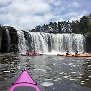 Kayaking  with Coastal Kayakers Paihia