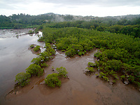 Bahia Santa Cruz at low tide, lined by mangrove forest.<br /><br />Coiba Island<br />Coiba National Park<br />Panama