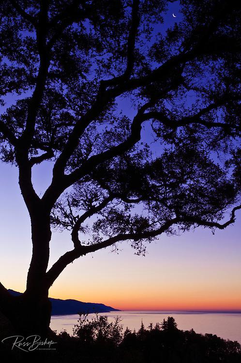 Crescent moon and dawn light over the Big Sur coast, California