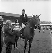 "06/08/1960<br /> 08/06/1960<br /> 06 August 1960<br /> R.D.S Horse Show Dublin (Saturday). ""Dundrum"", owned by Mr James Wade, Camas, Cashel, Co. Tipperary and ridden by Mr. Thomas Wade (brother of James) won the Wylie Perpetual Challenge Trophy, the 'Civillian' Championship of the Show, at the Dublin Horse Show. Picture shows the Hon. W.E. Wylie, Q.C., the diner of the trophy, presenting the prize to Mr. Thomas Wade."