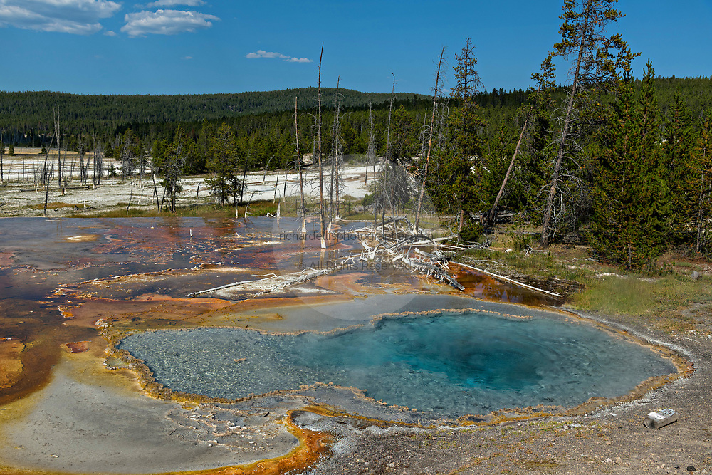 Firehole Spring, one of the most colorful hydrothermal pools of Yellowstone National Park and part of the Great Fountain Group along the Firehole Lake Drive in Yellowstone, Wyoming.