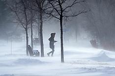 Polar Vortex - 31 Jan 2019