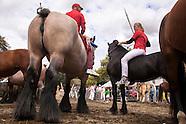 Ringreiten Walcheren - Ring Riding, Netherlands