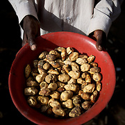 A local resident shows the food available for the whole family at their improvised home in the caves outside Buram village in South Kordofan's Nuba Mountains.