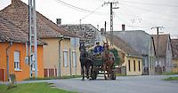Horse carriage, Duna Drava National Park, Mohacs, Hungary