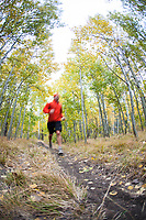 Young man trail running during fall near Fallen Leaf Lake, CA.