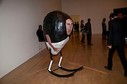 ENRICO DAVID'S WORK, Turner prize 2009. Tate Britain. Millbank. London. 7 December 2009