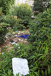 A Romanian birth certificate lies among the human faeces, soiled clothing, toilet paper and plastic bottles that litter a space between the shrubbery at Marble Arch where campers are using the privacy provided by the bushes to treat the area as a toilet. Over the last few years London has seen increasing numbers of Eastern European beggars and street performers on its streets as they flock to the UK and other wealthier countries to take advantage of people's generosity. London, August 02 2019.