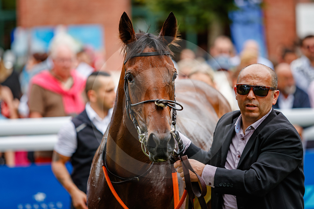 Pure Zen (A. Badel) wins Prix Francois Boutin Listed in Deauville, France  12/08/2018, photo: Zuzanna Lupa